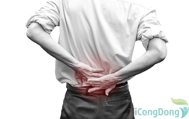 Triệu chứng hội chứng đuôi ngựa