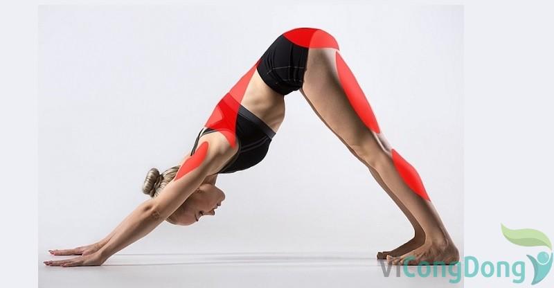 bài tập yoga cho người bị gai cột sống