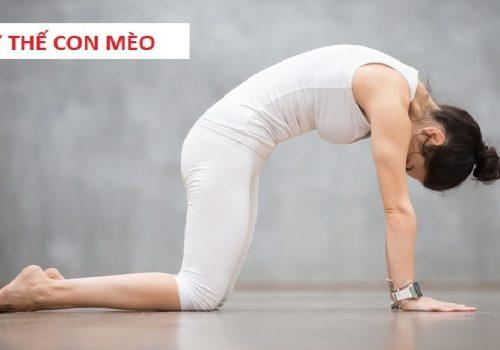 yoga chữa gai cột sống