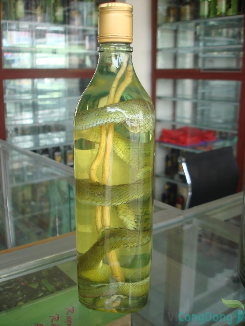 Cách chữa thoái hóa cột sống bằng bột rắn lục