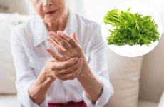 Bài thuốc dân gian chữa bệnh viêm khớp tại nhà
