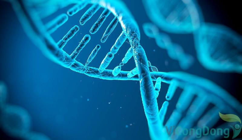 Viêm khớp dạng thấp có di truyền