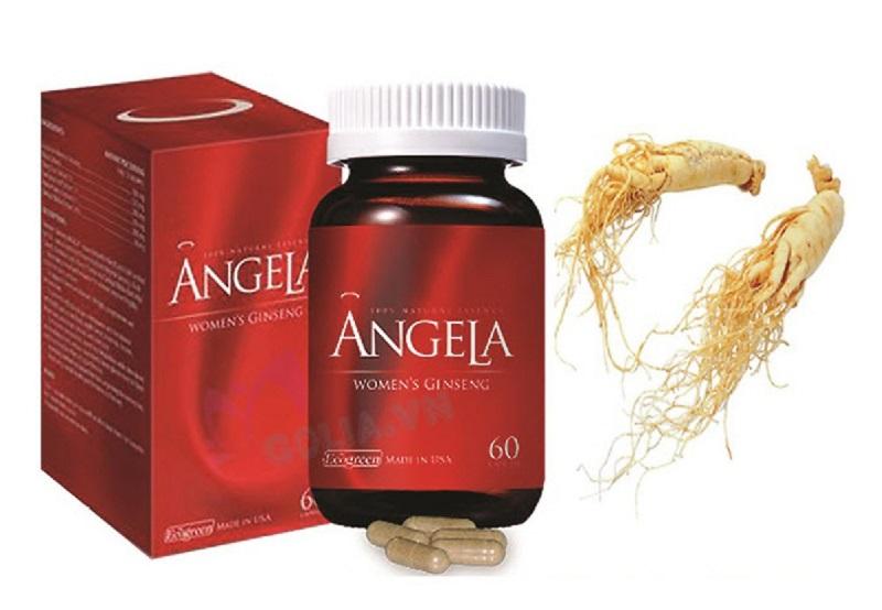 Tác dụng của sâm Angela